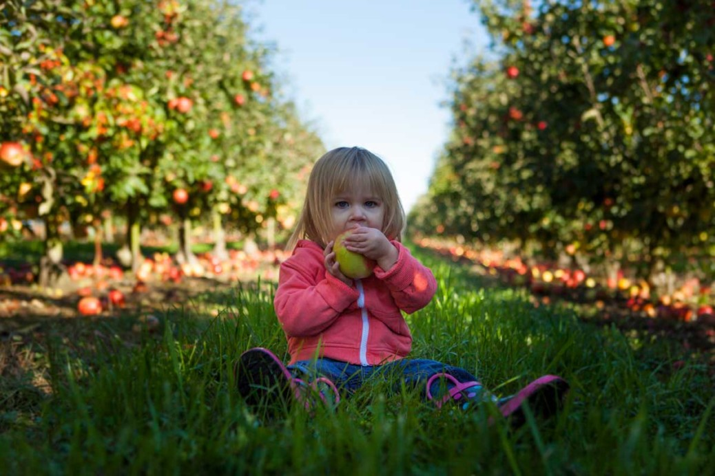 Keep Your Toddler Healthy