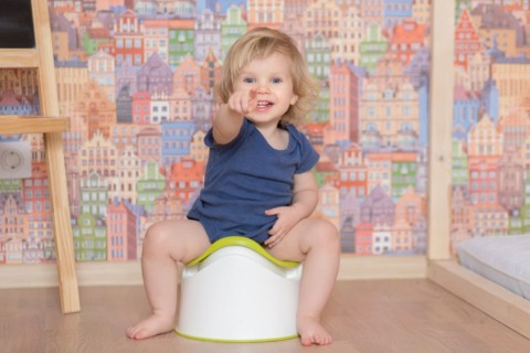 Toilet Training Your Child: The Ultimate Guide