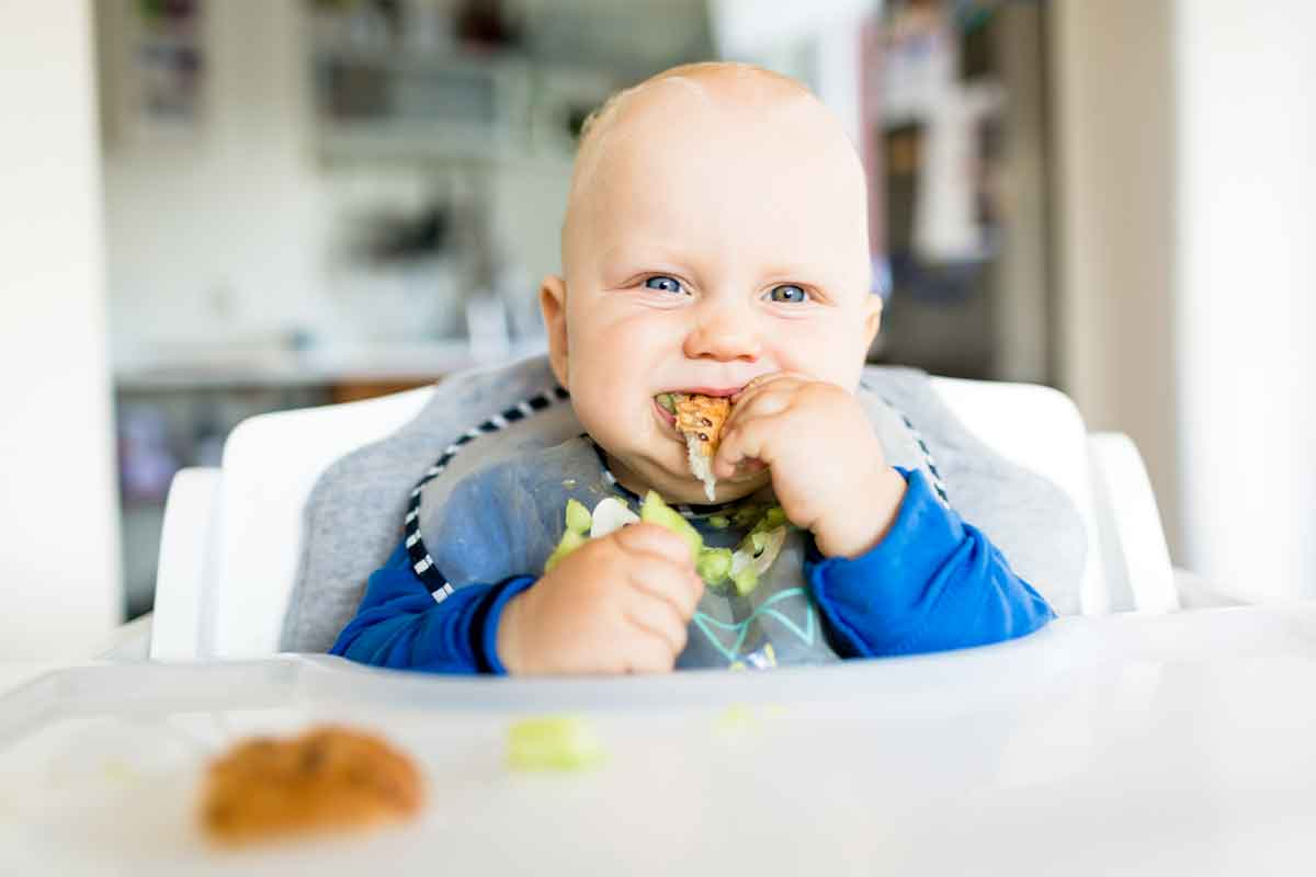 The 5 things yuo need to start solids